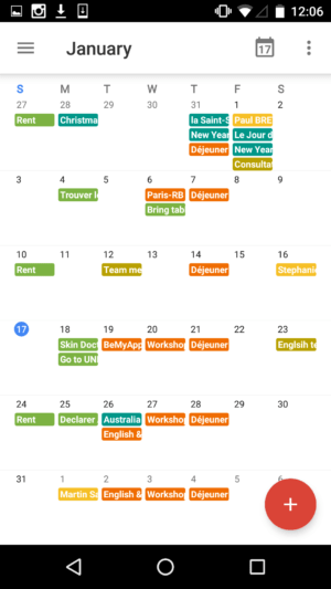Monthly view 2 by Google Calendar from UIGarage