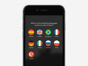 Language Picker by Sylvester Wilmott from UIGarage