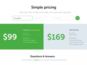 Simple pricing page by Farzadban from UIGarage