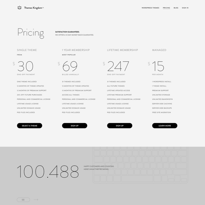 Pricing page by Theme Kingdom from UIGarage