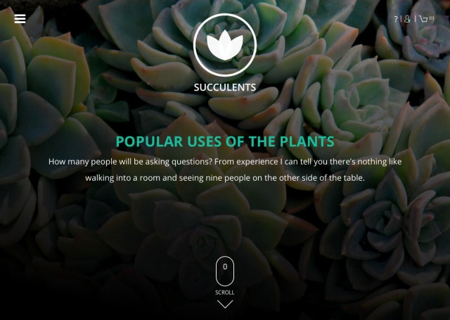Web Gallery by Succulents from UIGarage