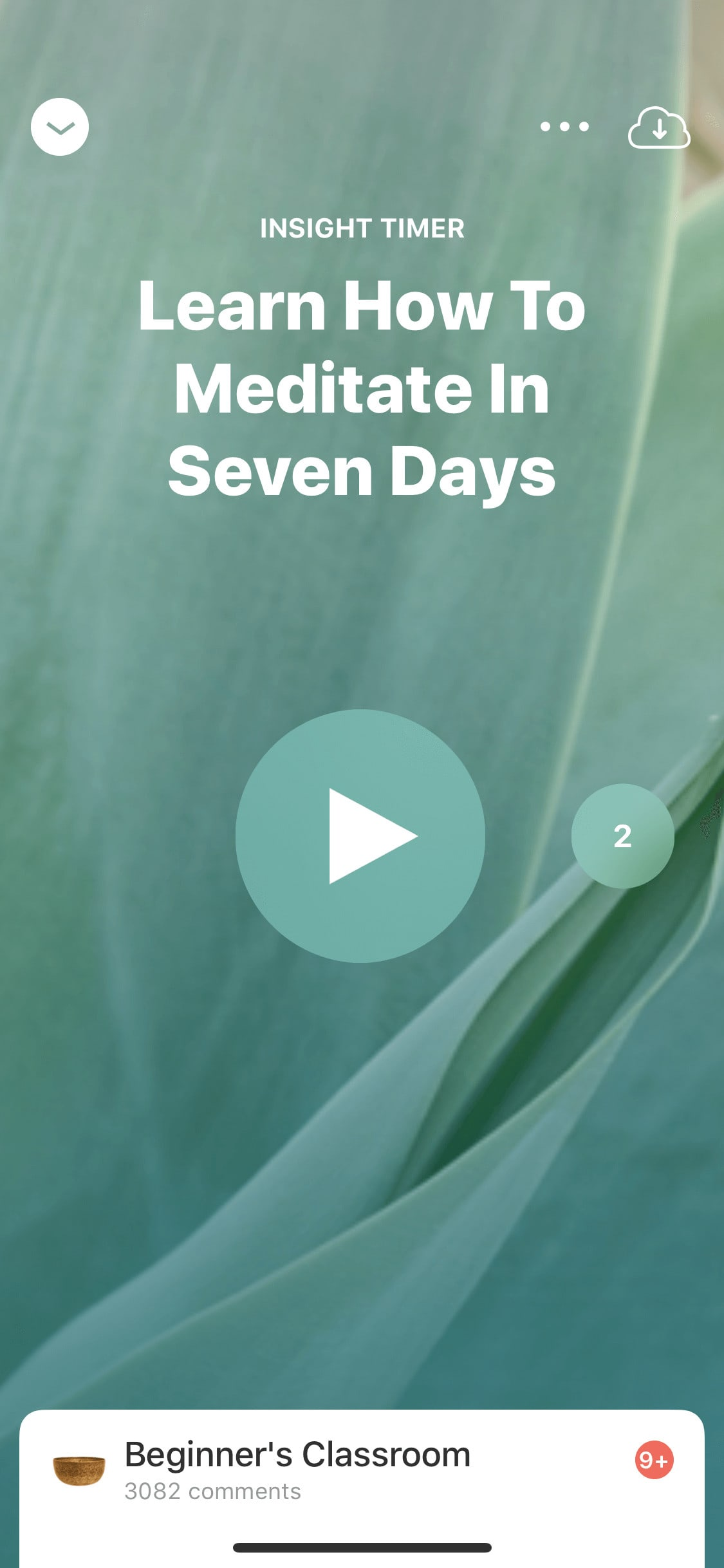 Class by Insight Timer on iOS