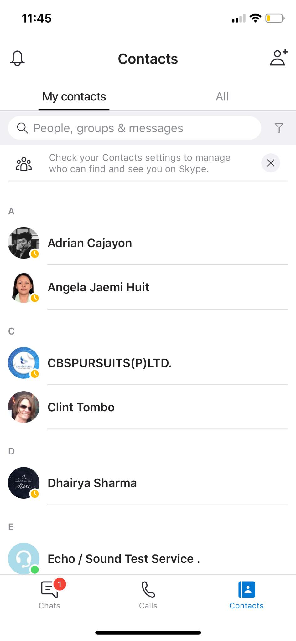 Contacts on iOS by Skype from UIGarage
