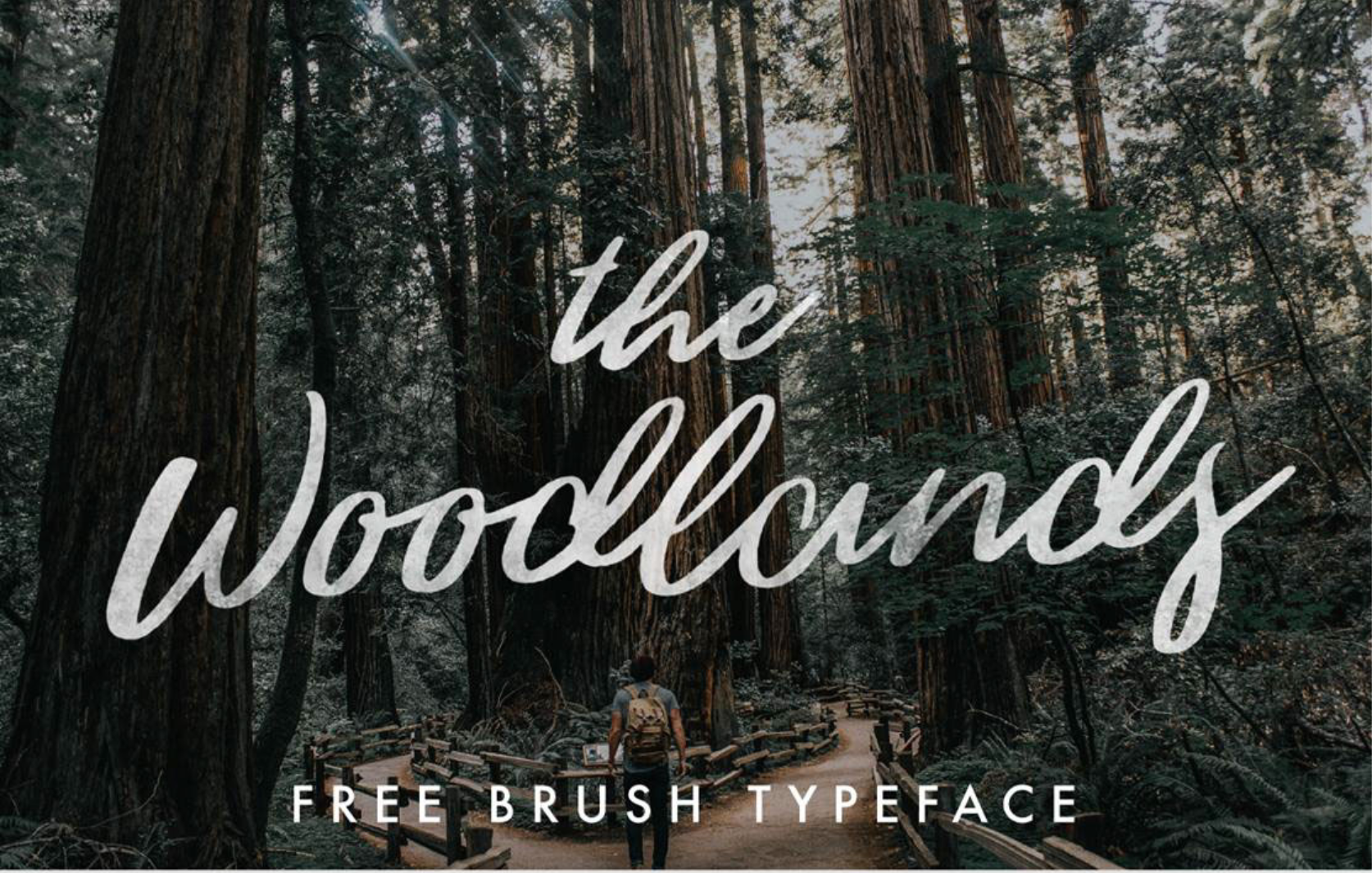 Top 10 Best Free Script Font for Your Design from UIGarage