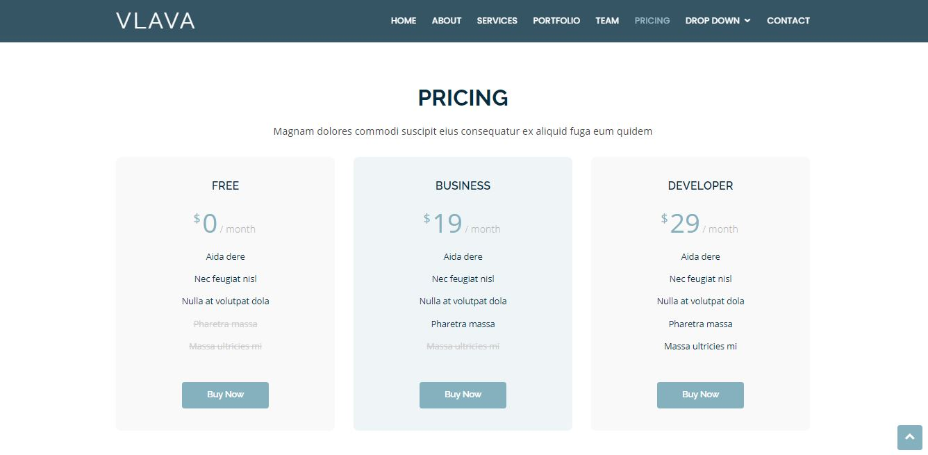 Pricing on Web by Vlava from UIGarage