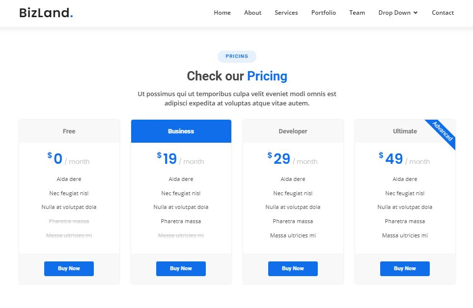 Pricing on Web by BizLand from UIGarage