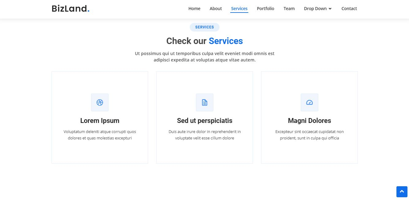 Services on Web by BizLand from UIGarage