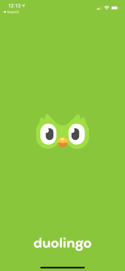 Splash Screen on iOS by Duolingo from UIGarage